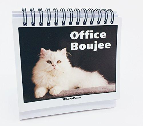 desk calendar gift for cat lovers