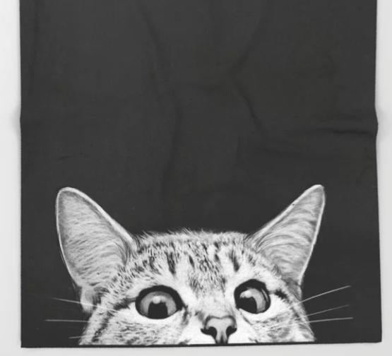 peeking kitty blanket gift for cat dads