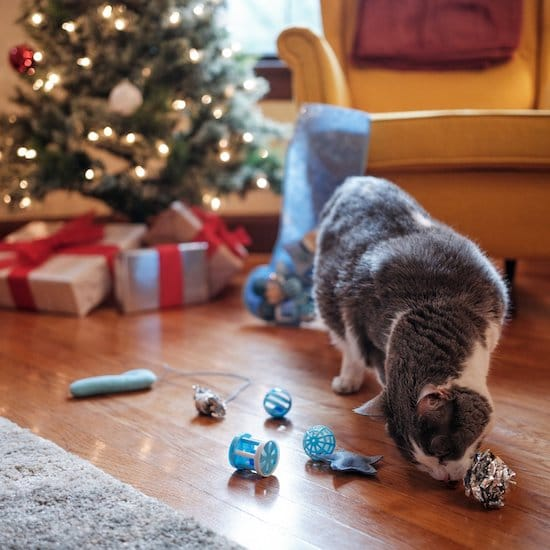 Frisco Christmas cat stocking of toys