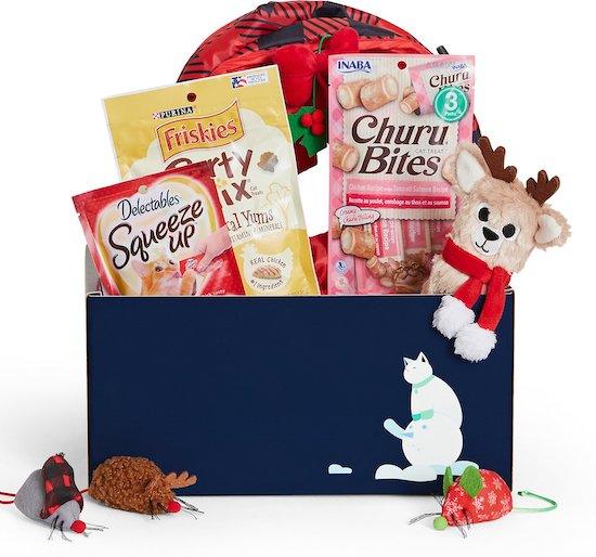 Goody Box package of Christmas toys and snacks for cats