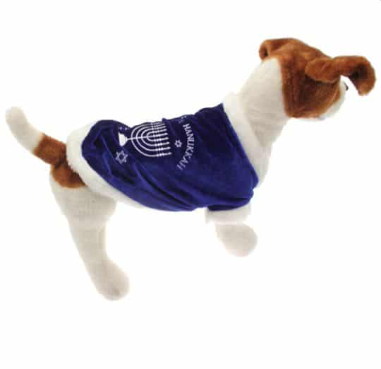 dog wears a Hanukkah dog sweater in soft blue and white trim with a menorah on the back