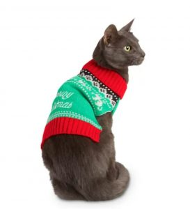 cat wearing green and red holiday sweater, Black Friday pet deal
