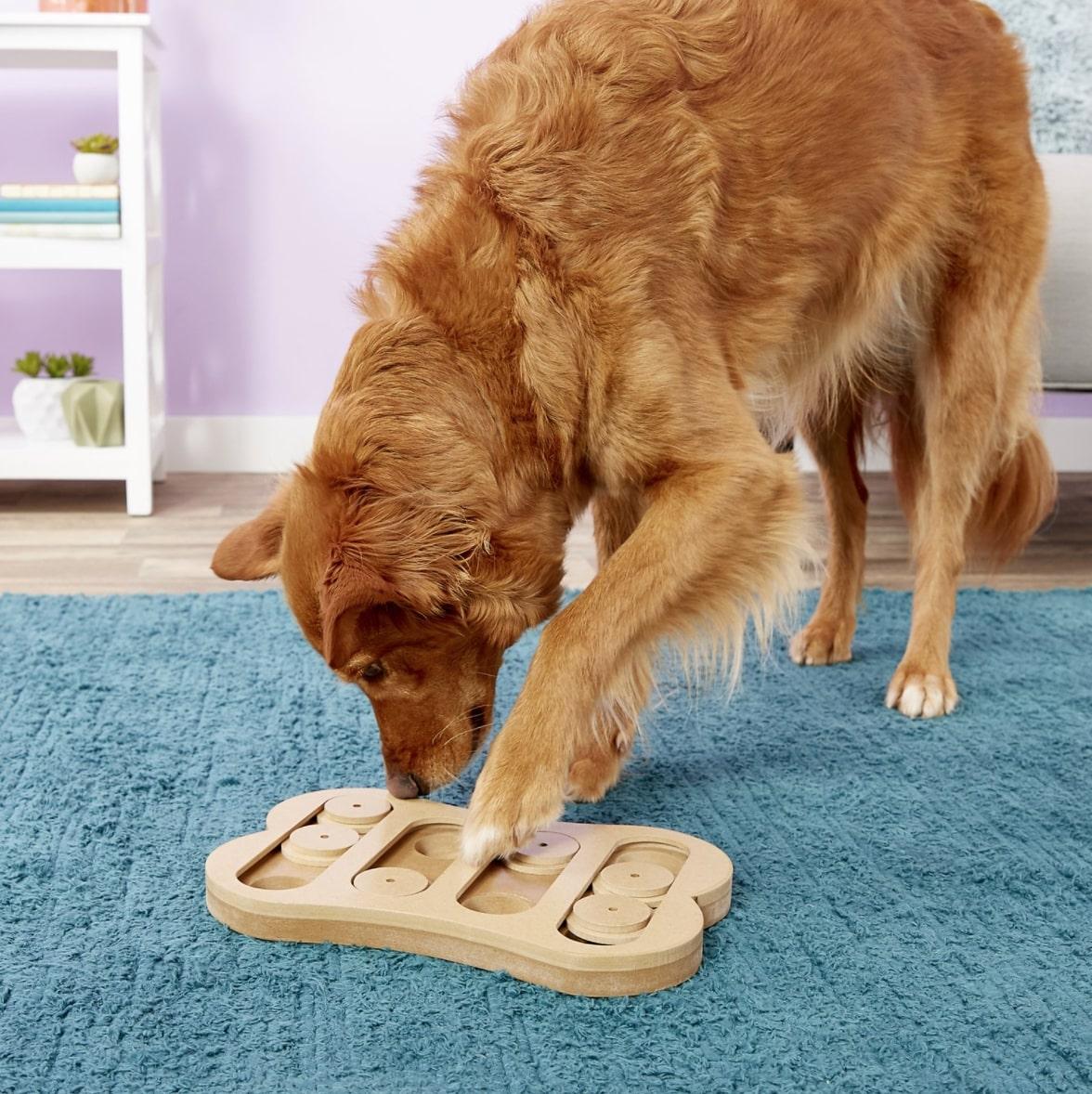Ethical Pet Seek-A-Treat Shuffle Bone Puzzle Dog Toy