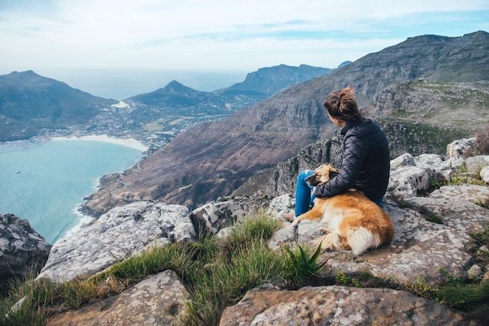 chien qui passe du temps avec son maître à la montagne