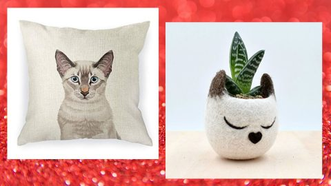 cat pillow and cat planter