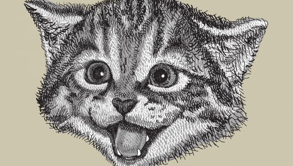 illustration of cat head