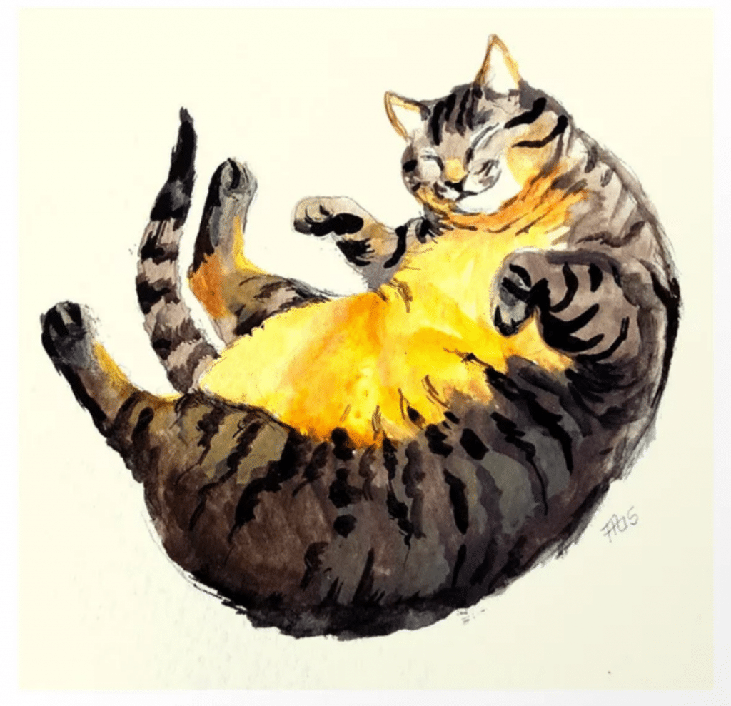 large tabby rolling on back art print