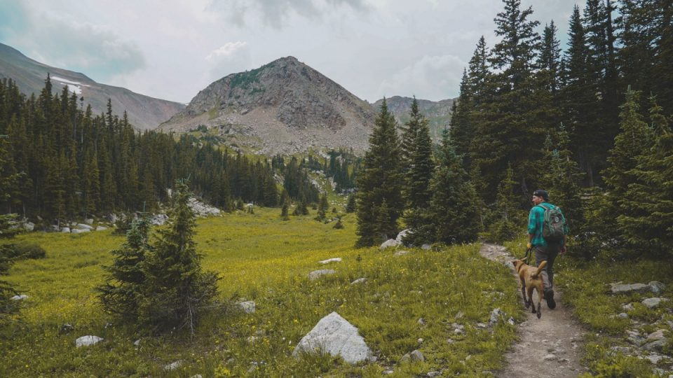 A dog and its person walking in the Colorado outdoors.