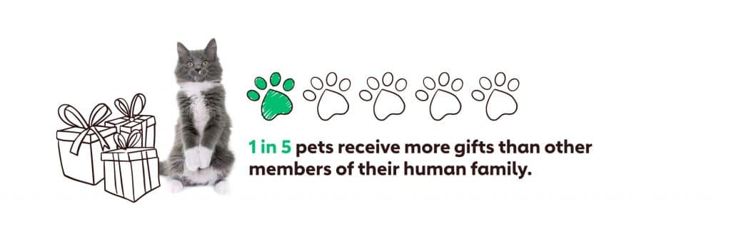 Graph showing that 1 in 5 pets receive more gifts than other members of their human family.