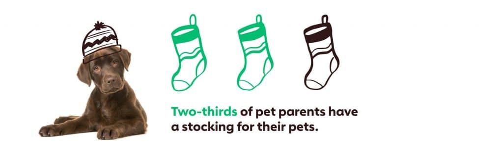 Graph showing that two-thirds of pet parents have a stocking for their pet.