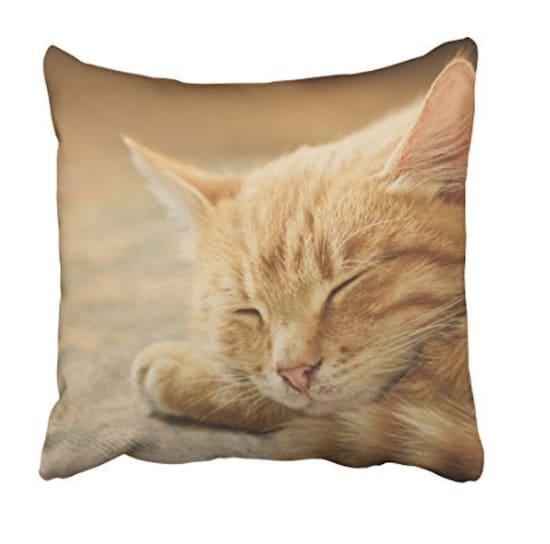 orange cat gift pillow