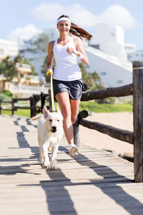 Running with dog in summer - 123rf