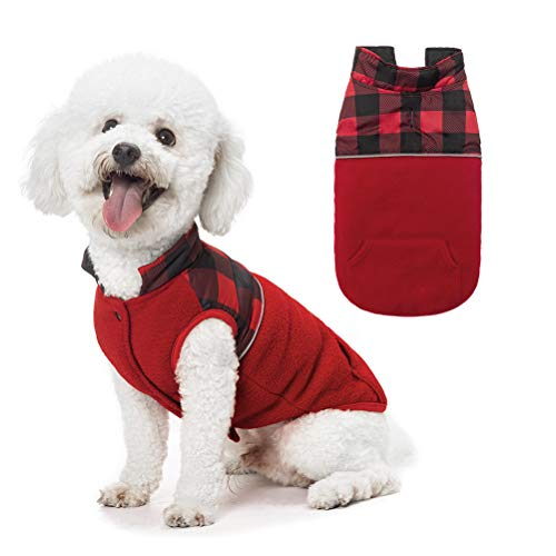 Vorname Pet Clothes Adorable Wearing Christmas Warm Sweater