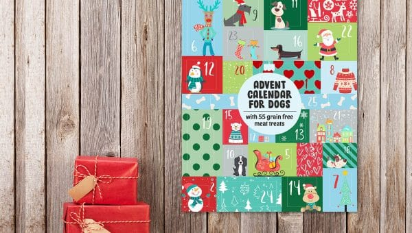 2019's Top 11 Advent Calendars for Dogs