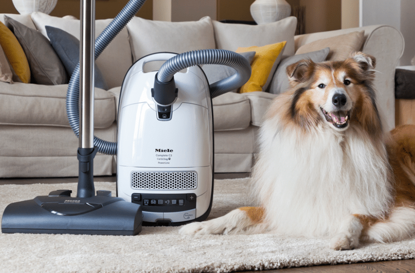 Miele cat and dog or dyson dyson dc29 origin