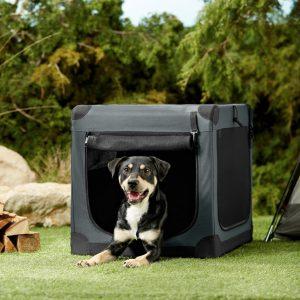 dog inside Frisco Indoor/Outdoor soft-sided dog crate