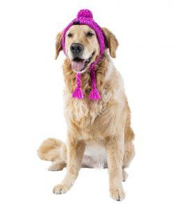 pink Canada Pooch Polar Pom Pom winter dog hat