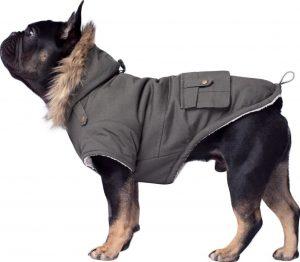 Canada Pooch insulated dog parka