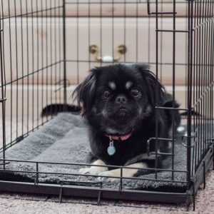 K&H Pet Products Self-Warming crate blanket pad