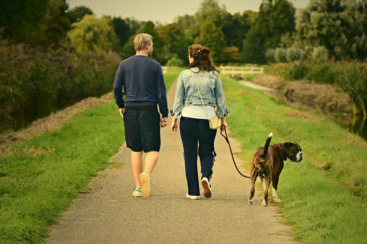 A man and woman walking along an outdoor trail, their dog on a leash beside them.