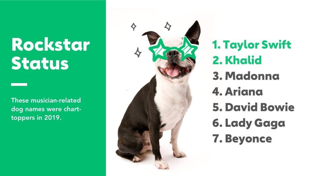 Most Por Dog Names In 2019 By Breed