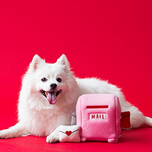 white dog with plush pink mailbox toy