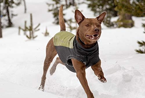 dog sweater ruffwear