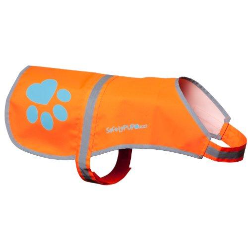 SafetyPup reflective vest for walk your dog month