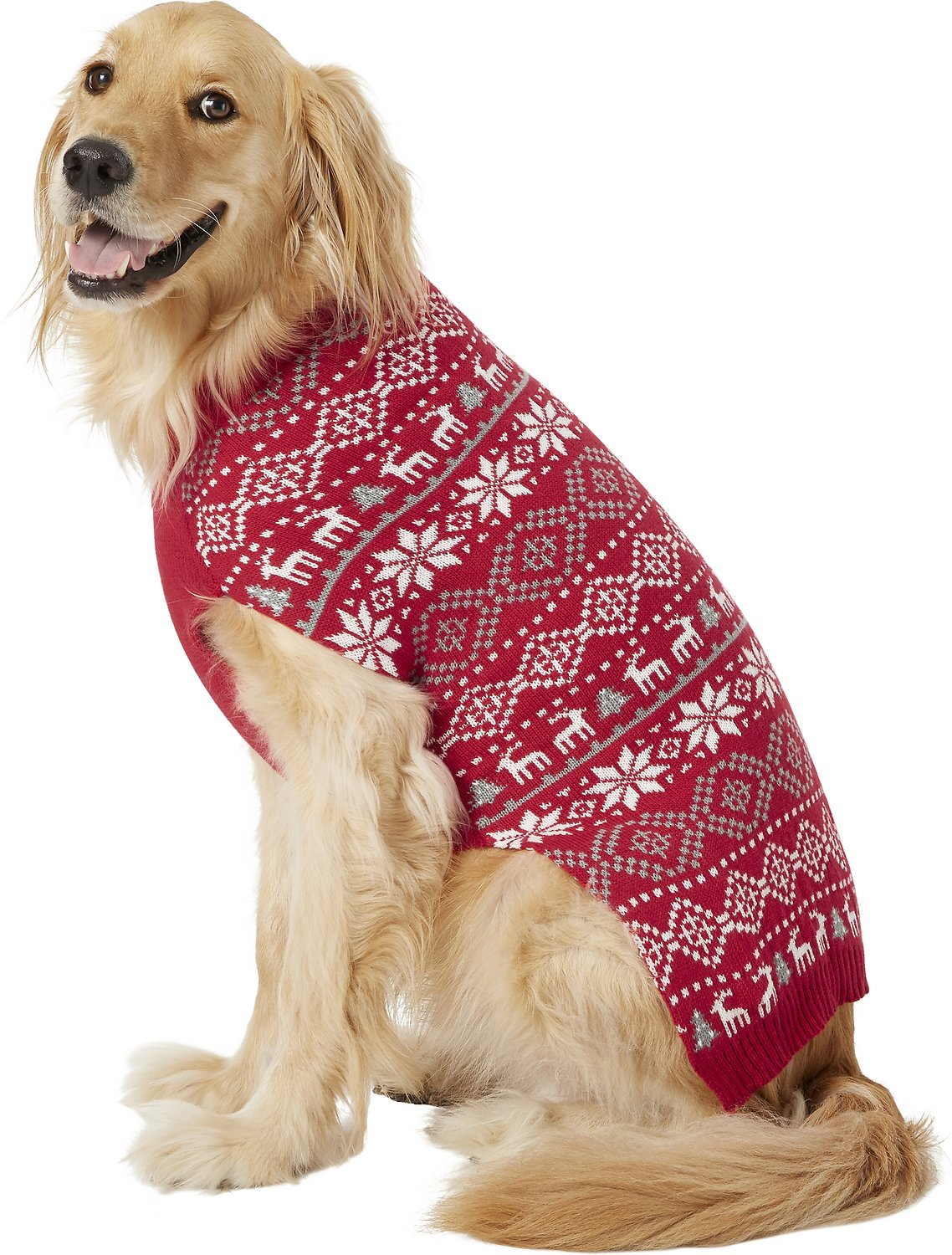 dog sweater frisco