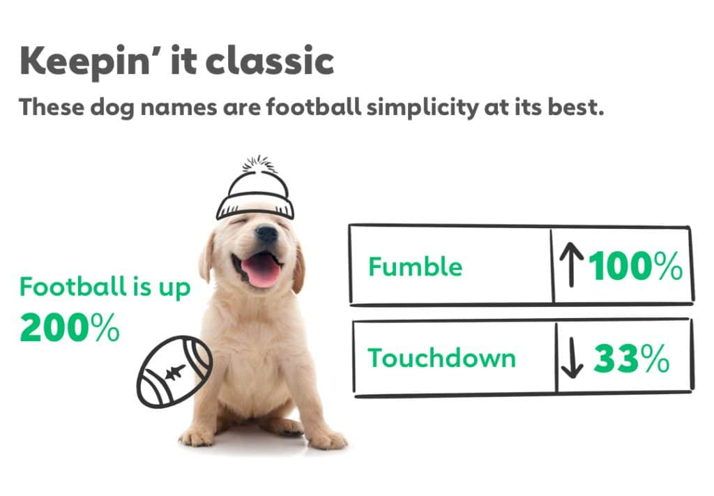 Keepin' it classic These dog names are football simplicity at its best. Football is up 200% Fumble is up 100% Touchdown is down 33%