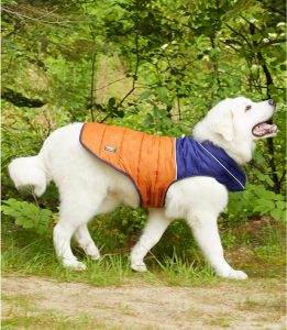L.L. Bean Mountain Classic Dog Parka