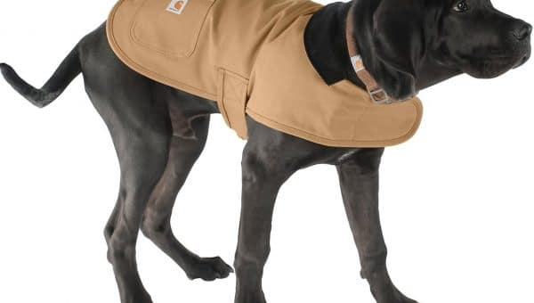 dog coat carhartt