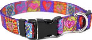 Yellow Dog Design bright colorful heart pattern dog collar