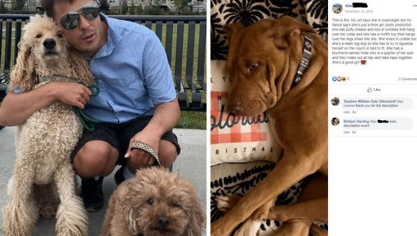 Blind Dog Lover Asks People to Describe Their Dogs to Him and the Result Is Heartwarmingly Amazing