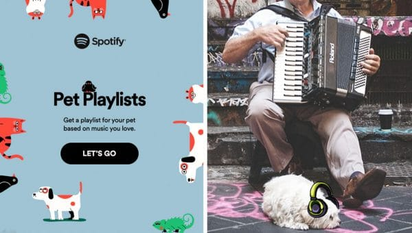 New Spotify Feature Creates Custom Playlists Tailored to Your Dog