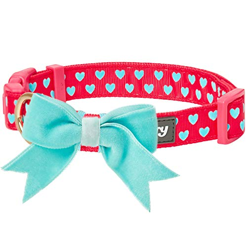Blueberry Pet bow and heart collar