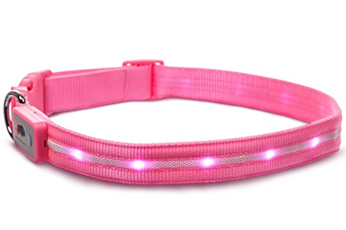 Waterproof Colorful Female Dog Collar and Dog Leash Wide Range of Sizes for Every Dog Cute Floral Dog Collar and Leash