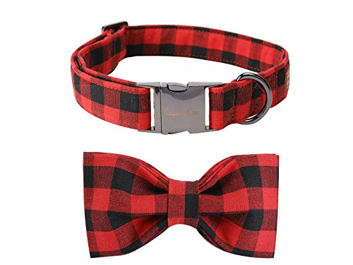 black-and-red-check bowtie dog collar