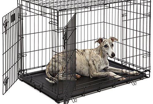 How To Choose The Right Dog Crate