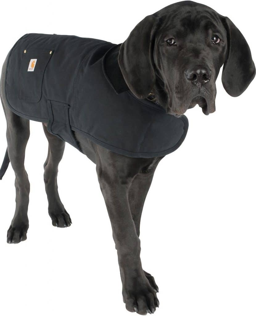 carhartt dog coat