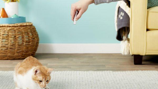 cat toys ethical pet laser