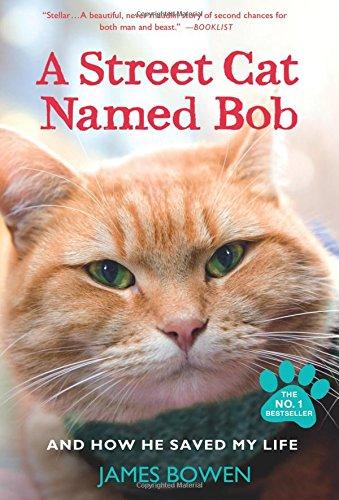"""A Street Cat Named Bob"" cover"
