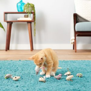 cat playing with Smarty Kat fuzzy mice filled with catnip