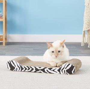 cat lounge scratcher