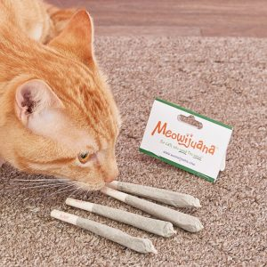 Meowijuana rolled catnip for cats
