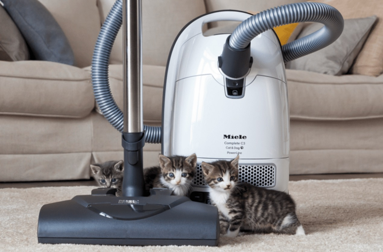Miele cat and dog or dyson dyson hot and cool pure link