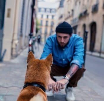 chien et son maitre en ville