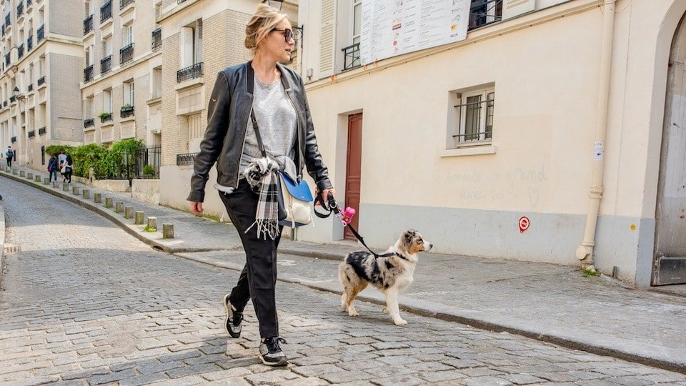 où promener son chien à Paris