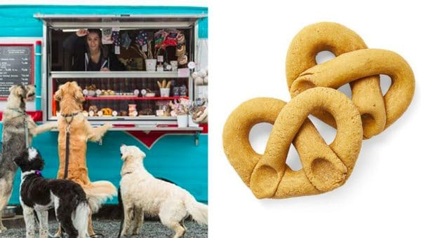 seattle barkery peanut butter pumpkin pretzel recipe
