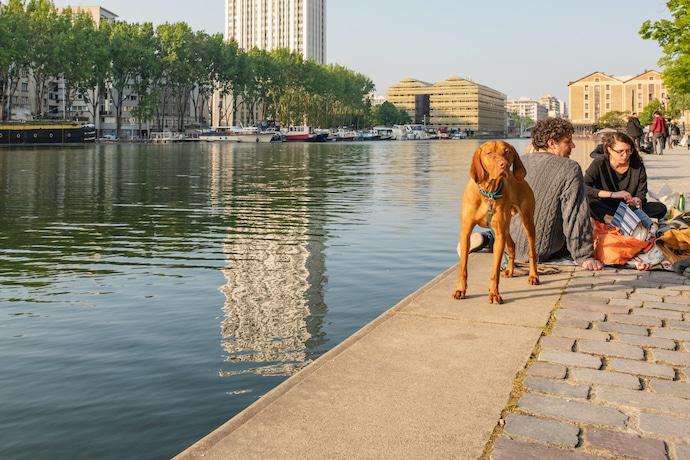 chien sur le Canal Saint Martin avec ses maîtres